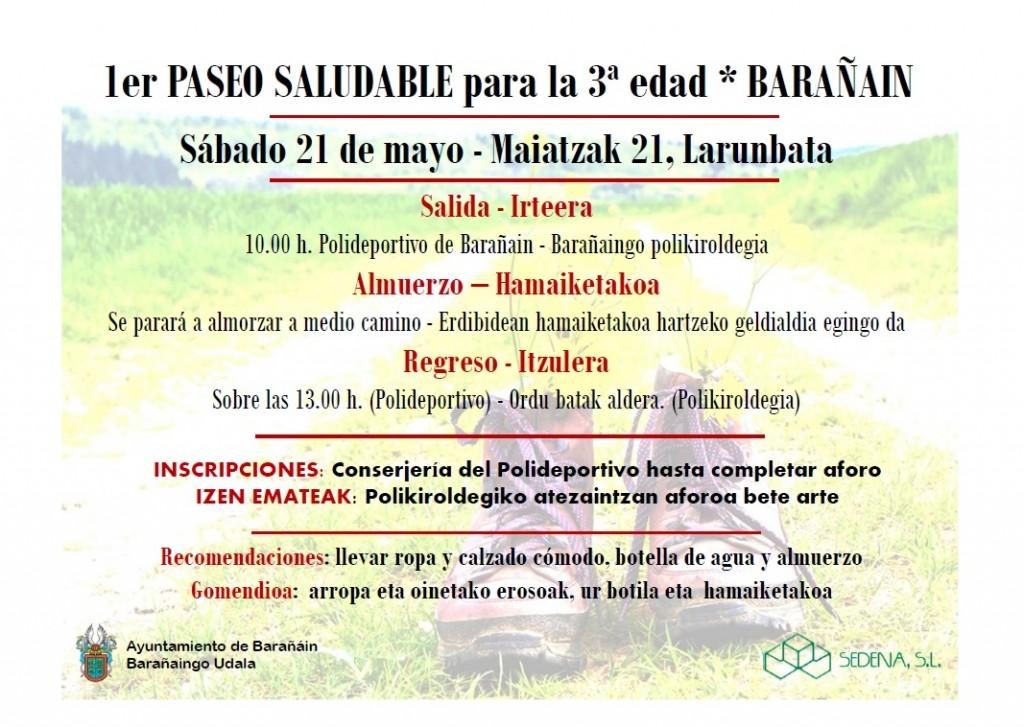 DEP-Paseo SaludableBarañain2016