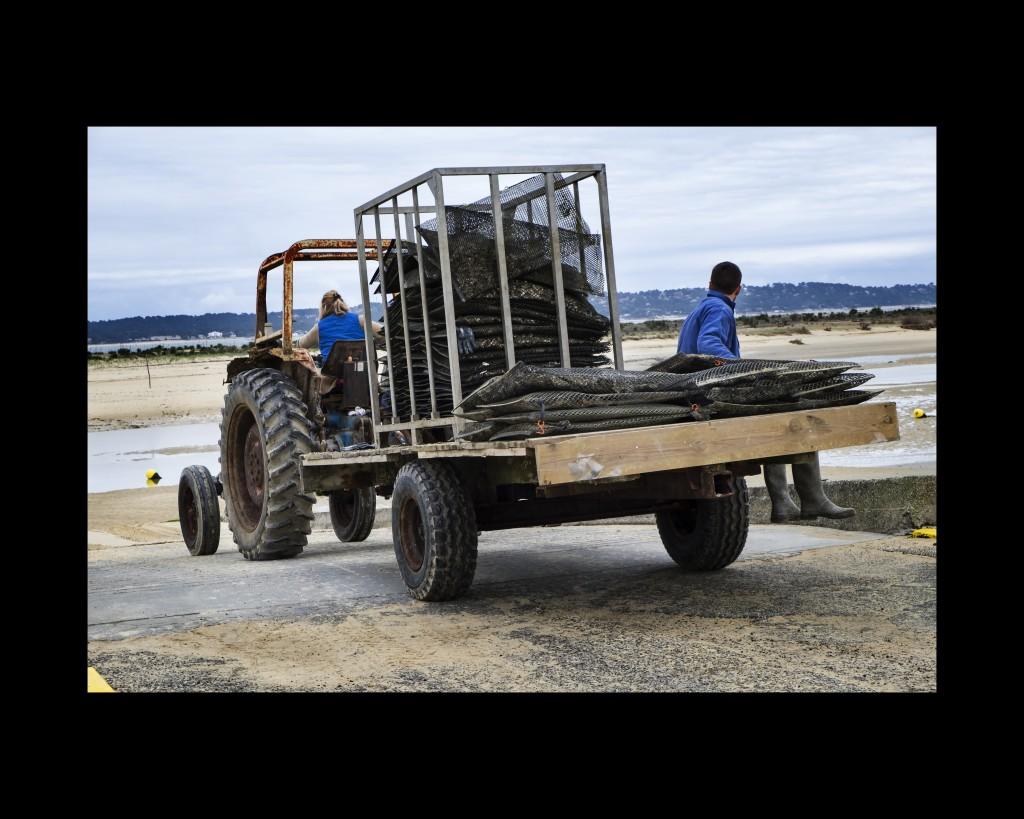 tractorista (la)
